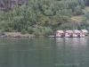 Aurlandsfjord bei Flåm