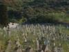 Friedhof auf Stromboli